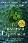 THE INTENTION EXPERIMENT : Using Your Thoughts To Change Your Life & The World