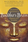 THE PRACTICAL NEUROSCIENCE OF BUDDHA'S BRAIN : Happiness, Love, & Wisdom