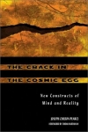 THE CRACK IN THE COSMIC EEG